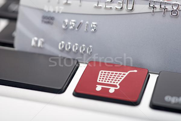 Compras on-line ícone botão compras cor Foto stock © tangducminh