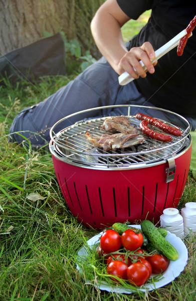 夏 バーベキュー 自然 湖 海岸 食品 ストックフォト © tannjuska