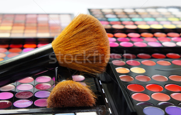 Profesional maquillaje grande establecer cosméticos moda Foto stock © tannjuska