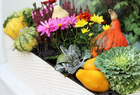 Well decorated terrace with a lot of flowers and vegetables  Stock photo © tannjuska