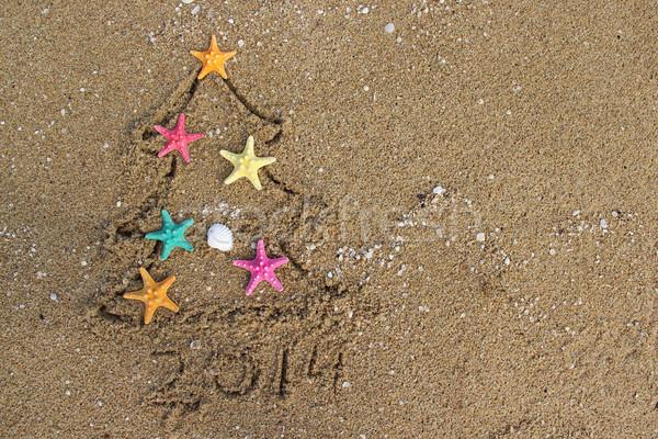 Christmas and New Year 2014 on the beach Stock photo © tannjuska