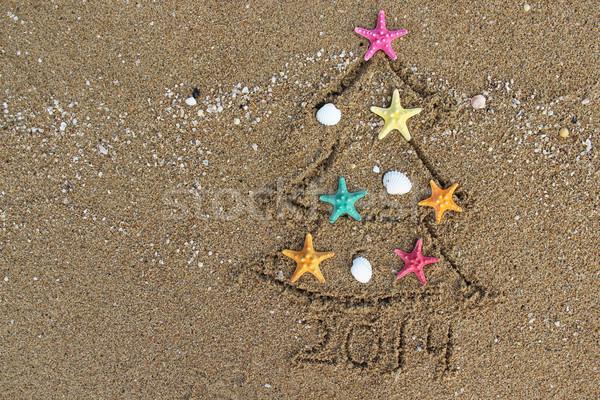 Noël nouvelle année 2014 plage arbre heureux Photo stock © tannjuska
