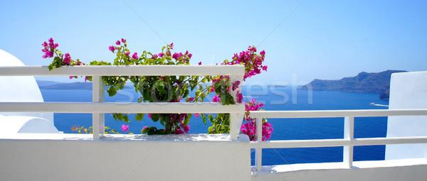 Santorini terrace with flowers Stock photo © tannjuska