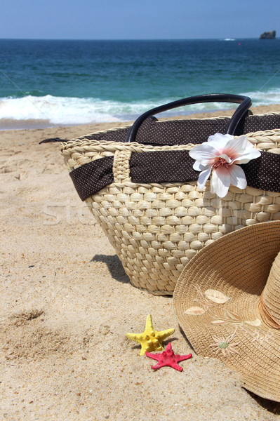 Sea and beach  Stock photo © tannjuska