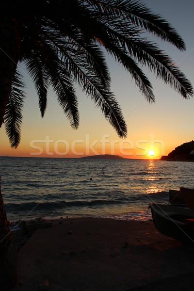 Sunset on the beach  Stock photo © tannjuska
