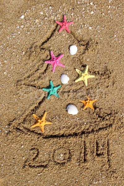 Рождества Новый год 2014 пляж зима звездой Сток-фото © tannjuska