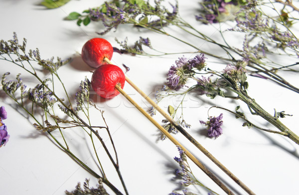 Mix of dry flowers for ikebana  Stock photo © tannjuska