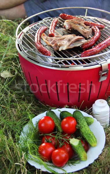 Summer grilling on the nature Stock photo © tannjuska