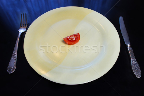 Big plate with a small piece of food Stock photo © tannjuska