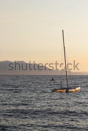 Adriatic sea in the evening  Stock photo © tannjuska