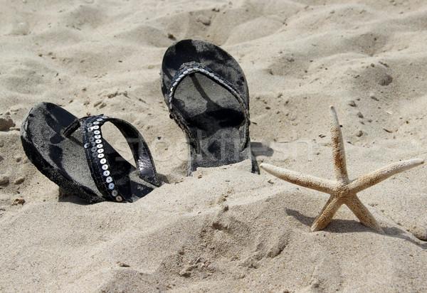Nyari cipő tengerpart tengeri csillag fehér homok nő divat Stock fotó © tannjuska
