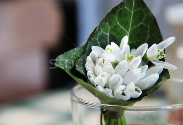Ramo hermosa creativa estilo flor primavera Foto stock © tannjuska