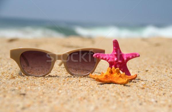 Plage mer été océan star Photo stock © tannjuska