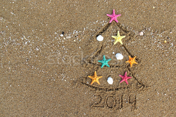 Christmas and New Year 2014 on the beach Stock photo © tannjuska