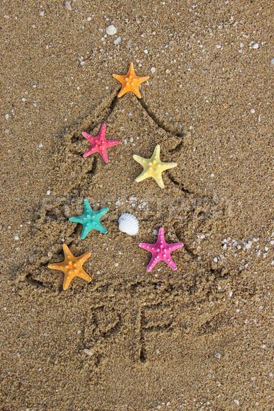 Christmas and New Year on the beach Stock photo © tannjuska