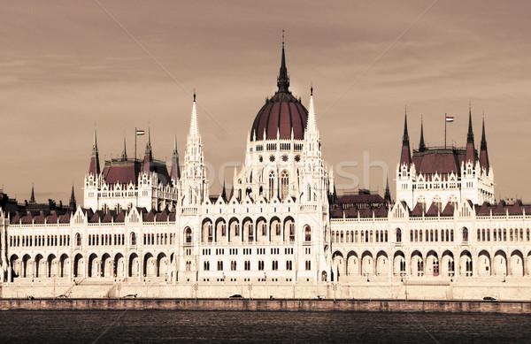 Building of Parliament, Budapest, Hungary Stock photo © tannjuska
