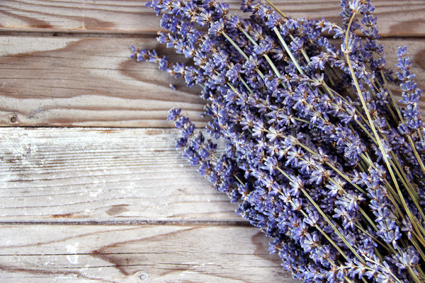 Lavender flowers on the wooden background  Stock photo © tannjuska
