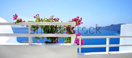 サントリーニ テラス 花 ギリシャ 結婚式 青 ストックフォト © tannjuska