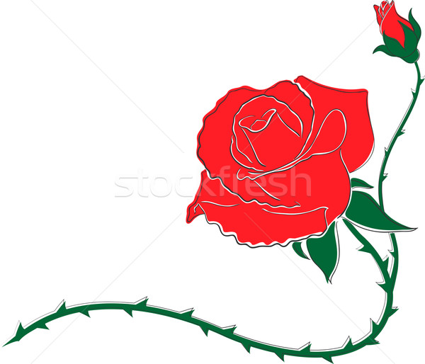 Rood decoratief patroon bloem Rood rose klein Stockfoto © tanya_ivanchuk