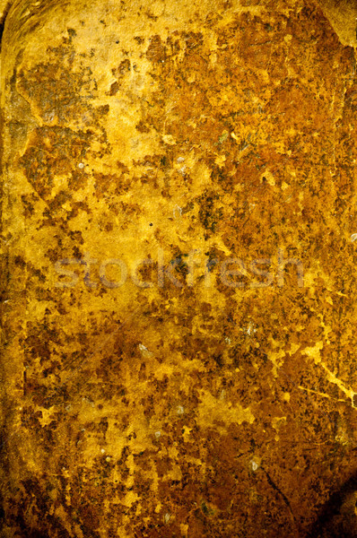 Antique Old Leather Background Texture Stock photo © tarczas