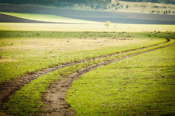 dirt road through the field Stock photo © tarczas