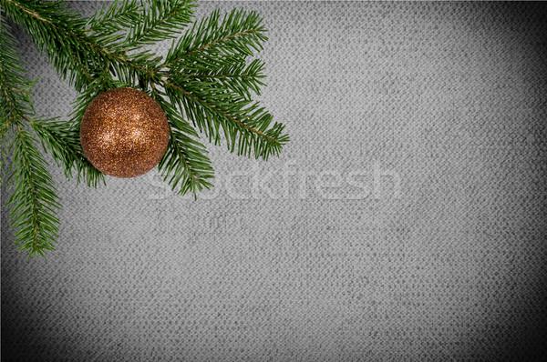 Yeşil şube Noel top tuval Stok fotoğraf © tarczas