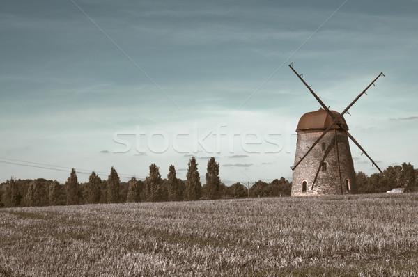 windmill on farm field  Stock photo © tarczas