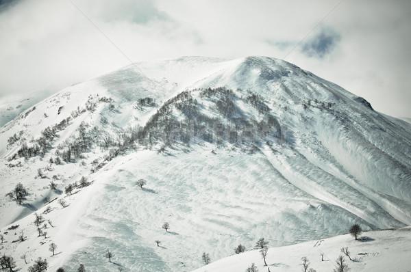 high mountains in Georgia in the winter time Stock photo © tarczas