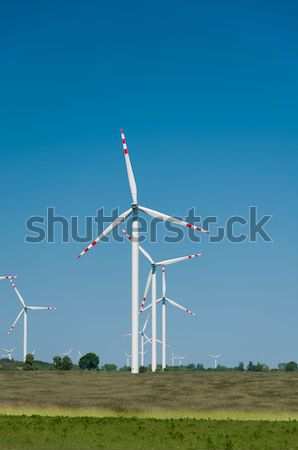 green meadow with Wind turbines generating electricity  Stock photo © tarczas