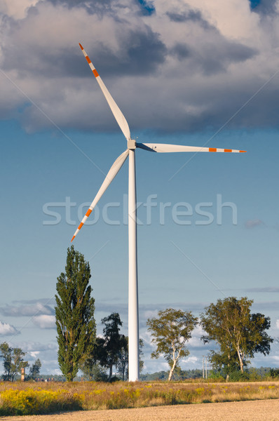 wind turbine farm on the rural terrain Stock photo © tarczas