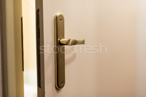 View from open wooden door with metallic handle Stock photo © tarczas