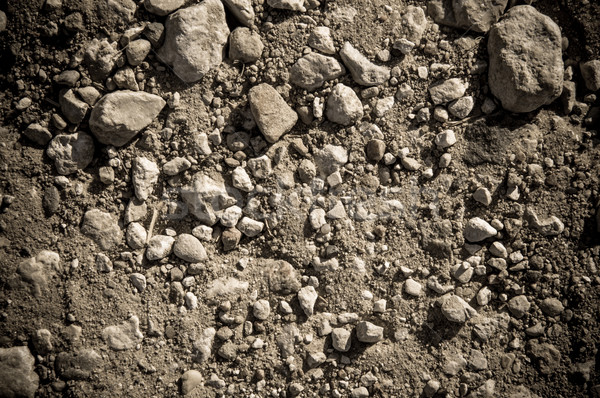 Dry soil and stones of an agricultural field  Stock photo © tarczas