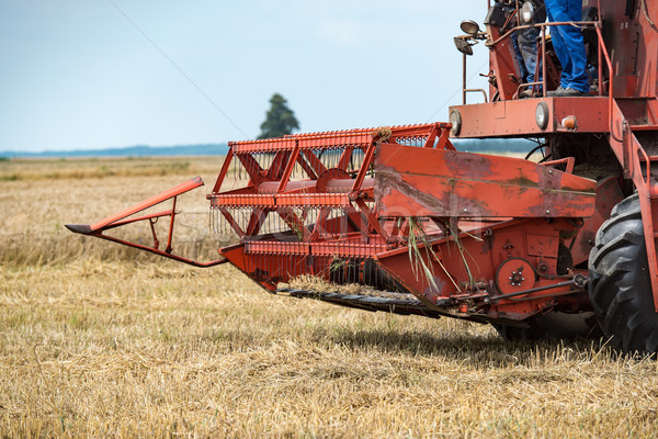combine harvester that is harvesting wheat on summertime Stock photo © tarczas