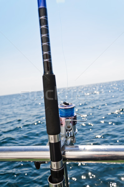 big game fishing reel in natural setting  Stock photo © tarczas