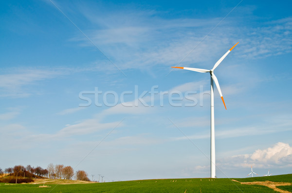 Boerderij gras groene Blauw witte Stockfoto © tarczas