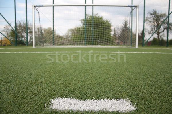 Pena fútbol tribunal hierba fútbol Foto stock © tarczas
