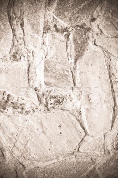 Mur tekstury budowy ściany tle kamień Zdjęcia stock © tarczas