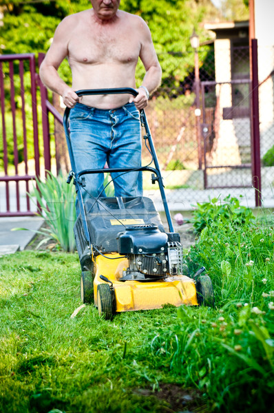 man cutting the grass with the mower  Stock photo © tarczas
