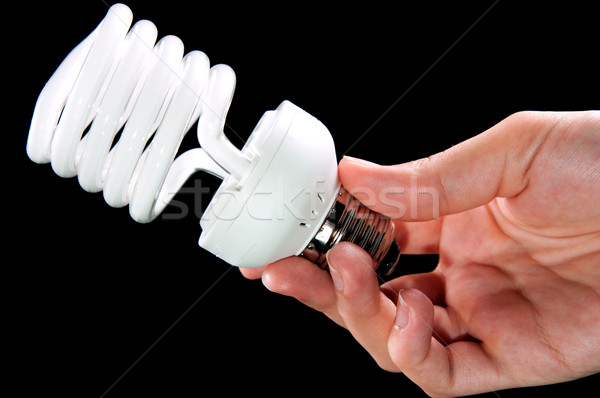 energy saving lightbulb in hand Stock photo © tarczas