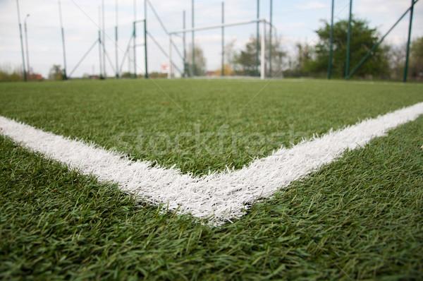 white line on football court  Stock photo © tarczas