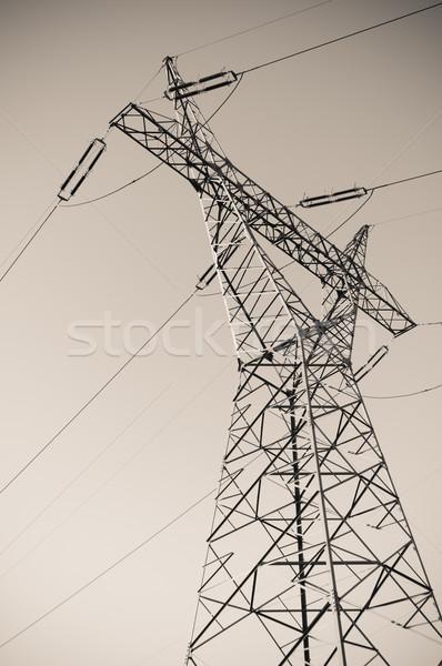 Pylon and transmission power line in sunset Stock photo © tarczas