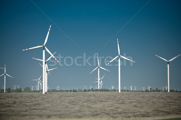 Wind turbine farm on rural terrain Stock photo © tarczas