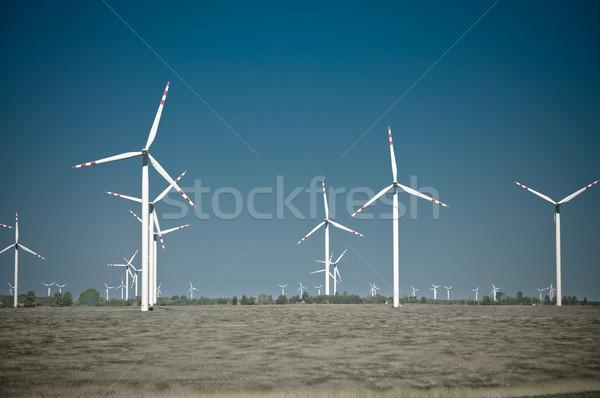 Szélturbina farm vidéki terep kék ipari Stock fotó © tarczas