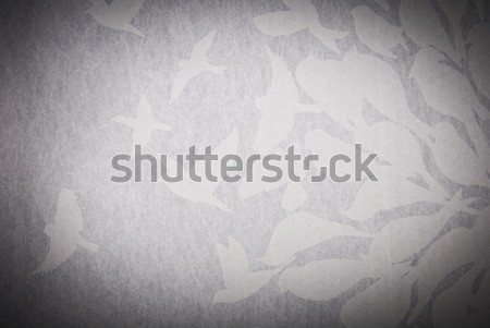 bird abstract background or texture Stock photo © tarczas
