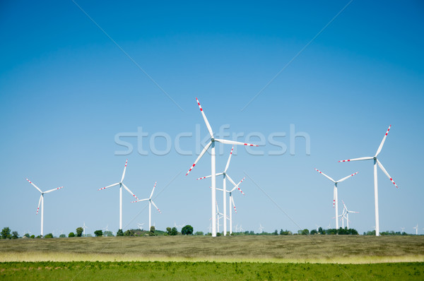 Szélturbina farm vidéki terep technológia energia Stock fotó © tarczas
