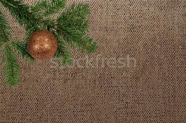 Zöld ág karácsony labda vászon Stock fotó © tarczas