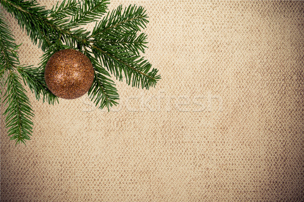 Groene tak christmas bal doek Stockfoto © tarczas