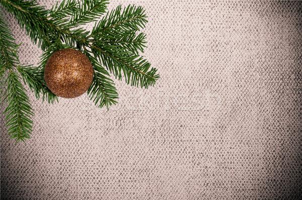 Verde ramo natal bola lona Foto stock © tarczas