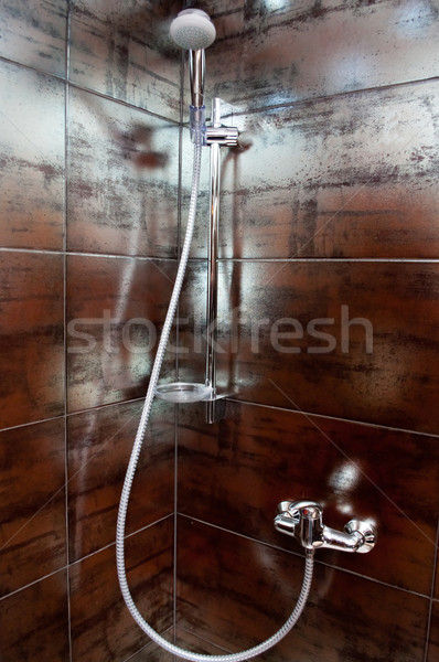 shower in a cubicle Stock photo © tarczas