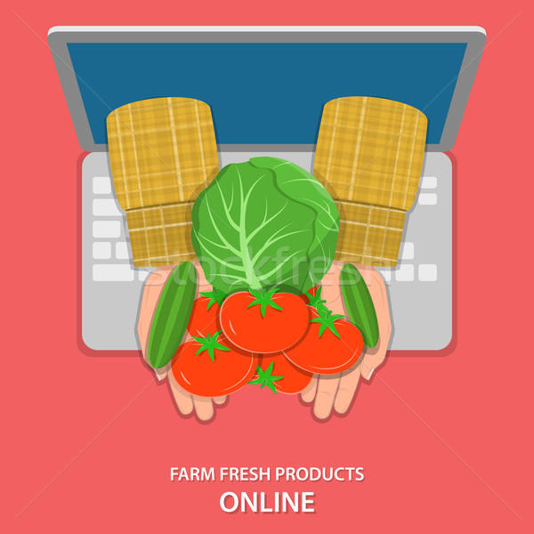 Online farm products flat vector concept.  Stock photo © TarikVision